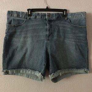 Terra & Sky Denim Shorts Size 24W